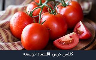 قسمت هجدهم - عبور گوجه از مرز