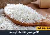 قسمت بیست و یکم - اوج گیری قیمت برنج در سال ٢٠٠٧ - ٢٠٠٨