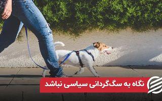 نگاه به سگ گردانی سیاسی نباشد